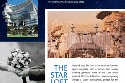 The Star Performing Arts Centre Brochure