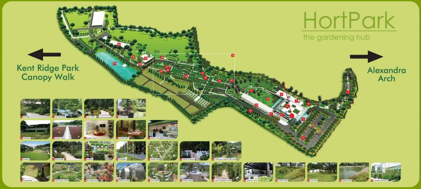 Other People Simply Come To Hort Park Relax Or Take A Stroll Through The Many Nature Walks Located Here Eat Their Lunch