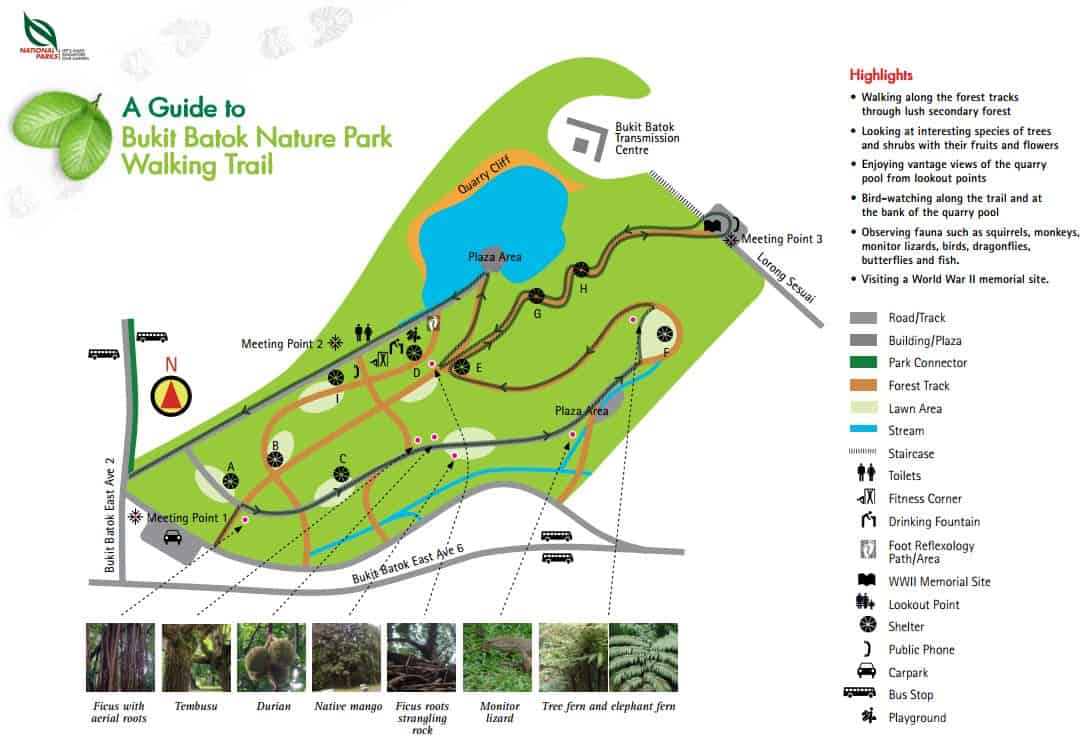 Bukit Batok Nature Park Walking Trail