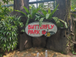 Butterfly Park & Insect Kingdom 03
