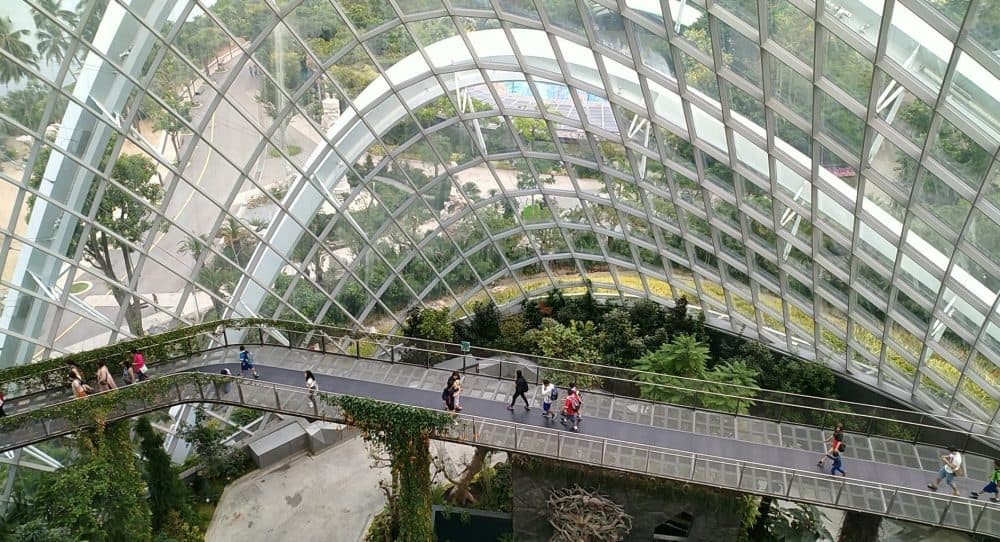 cloud forest - Garden By The Bay Entrance