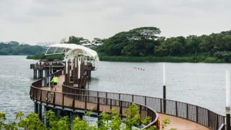 Seletar-featured