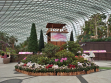 Flower Dome 07