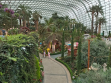 Flower Dome 10