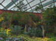 Flower Dome 14