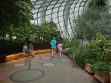 Flower Dome 16