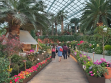 Flower Dome 26