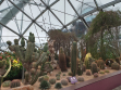 Flower Dome 27