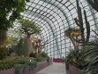 Flower Dome 31