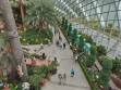 Flower Dome 33