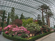 Flower Dome 39