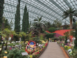 Flower Dome 43