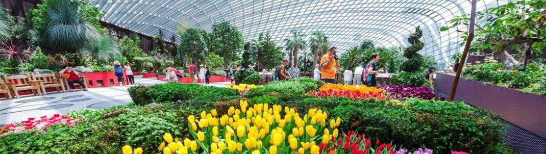Flower Dome Ticket Prices Admission Gardens By The Bay Singapore
