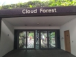 Cloud Forest 00001