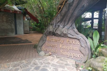Butterfly Park & Insect Kingdom-01