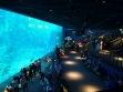 Sea Aquarium 08