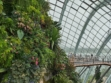 Gardens by the Bay 21