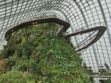 Gardens by the Bay 23