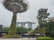 Gardens by the Bay 35