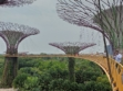 Gardens by the Bay 43