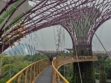 Gardens by the Bay 44