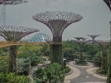 Gardens by the Bay 46