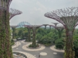 Gardens by the Bay 49