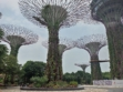 Gardens by the Bay 51