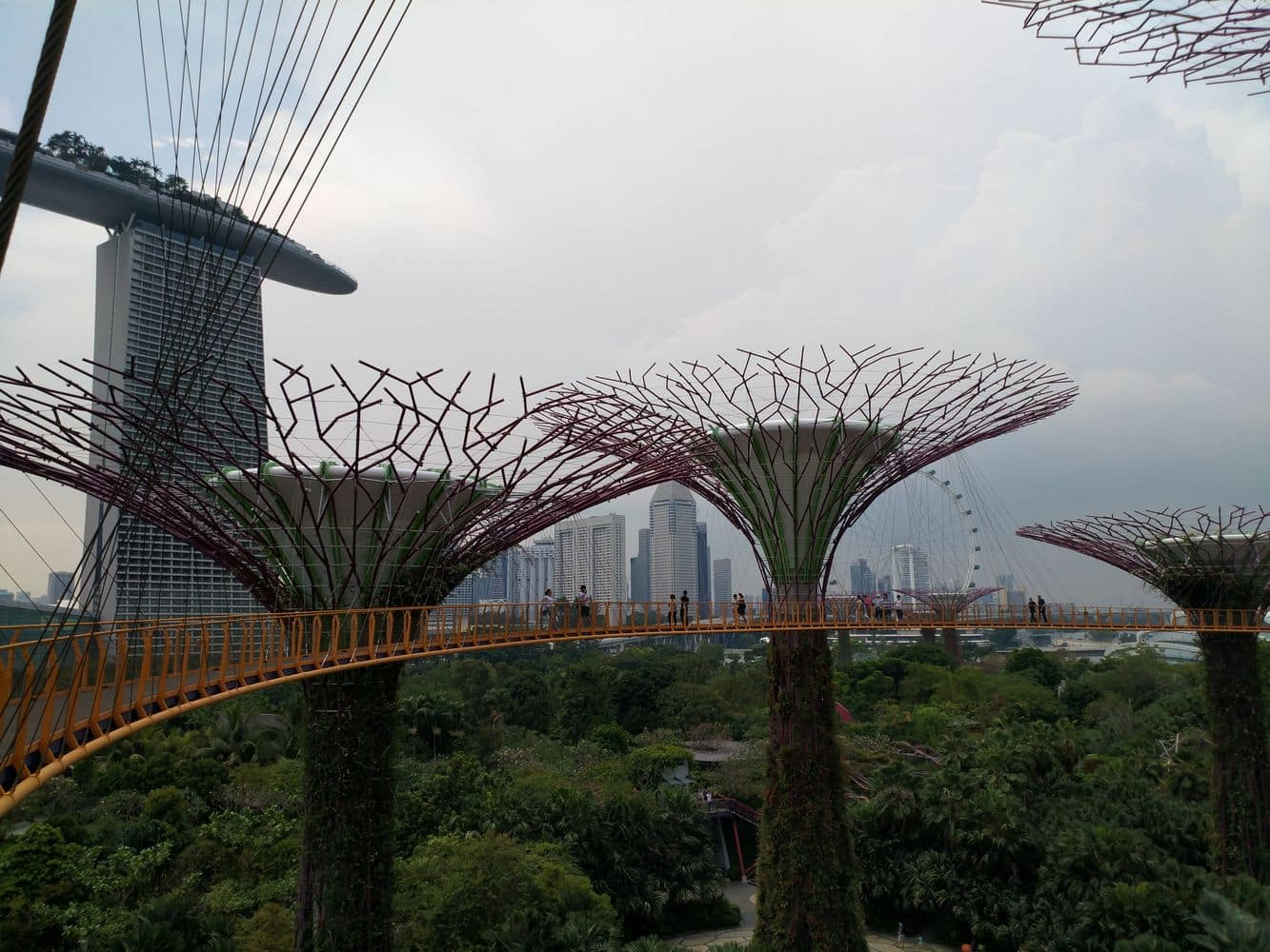 Gardens by the bay 00050