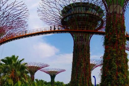 Gardens by the bay 00055