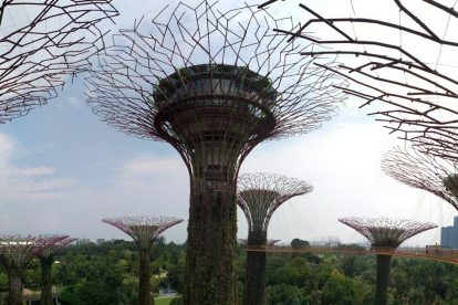 Gardens by the bay 00056