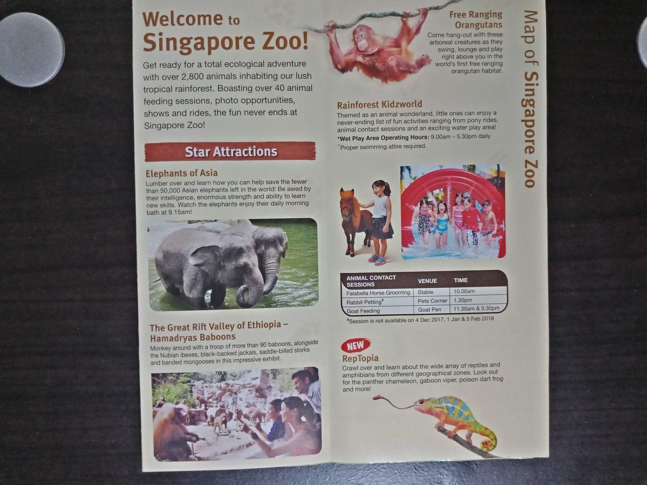 Singapore Zoo Ticket Price Entrance Fee Opening Hours