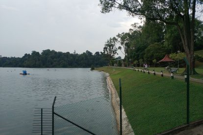 MacRitchie Nature Trail-03