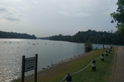 MacRitchie Nature Trail-04