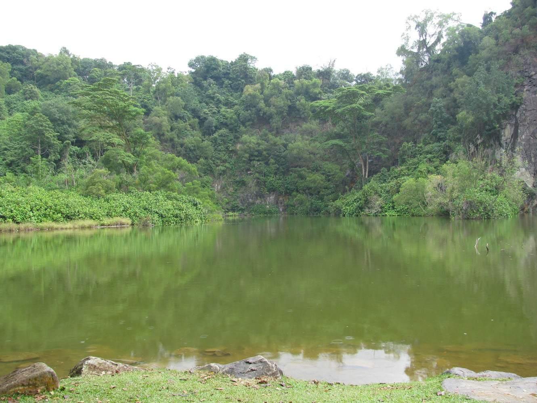 Bukit Batok 02