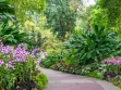 National Orchid Garden 03