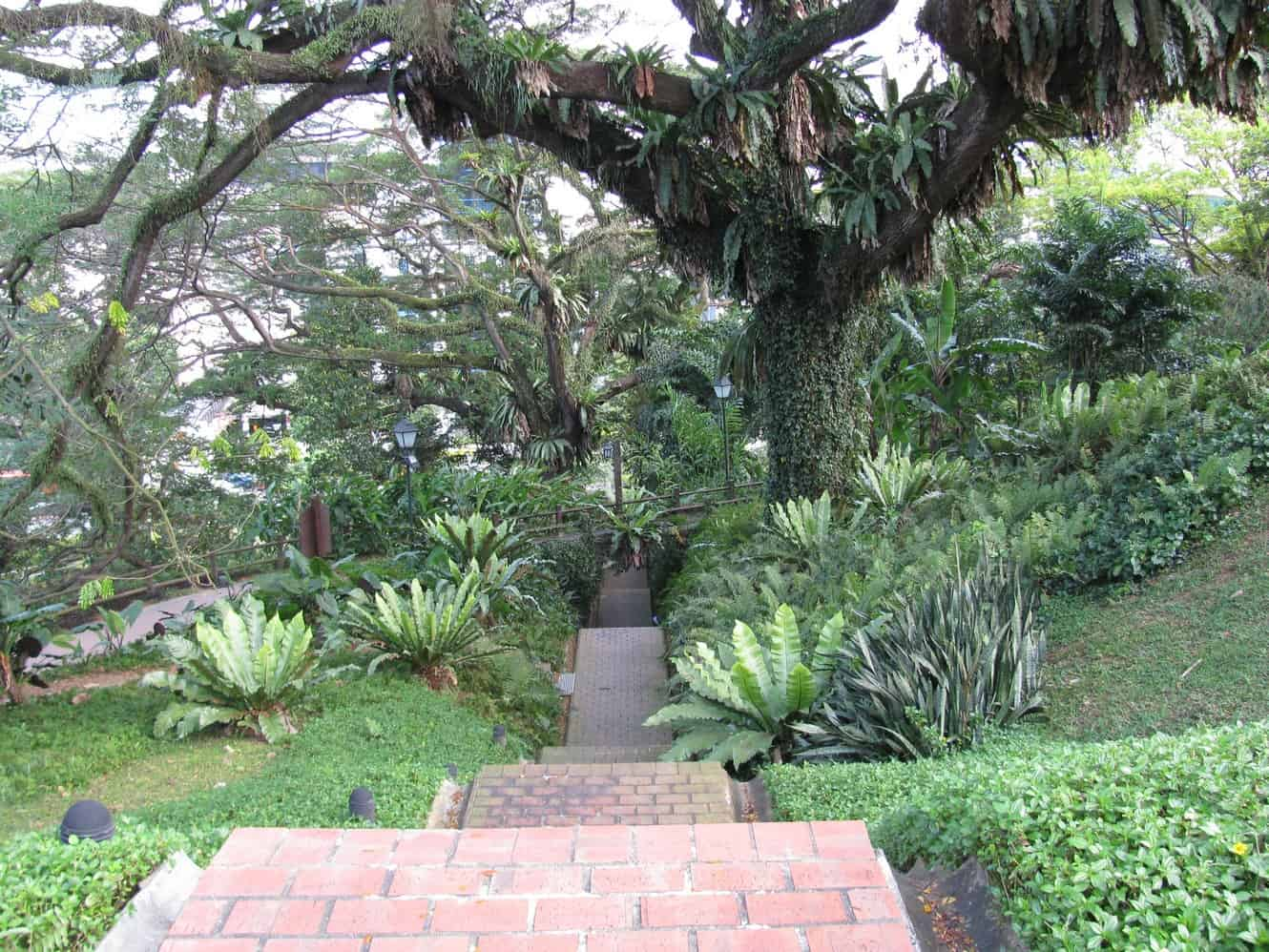 Fort Canning Park 01