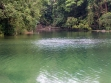 MacRitchie Reservoir 06