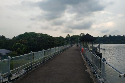 MacRitchie Reservoir-09