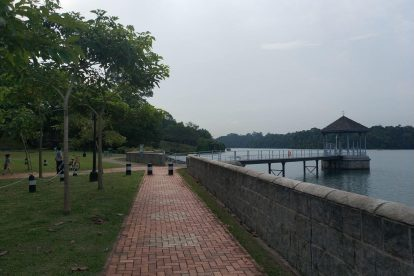 MacRitchie Reservoir-12