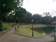 MacRitchie Reservoir-15