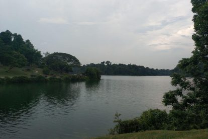 MacRitchie Reservoir-16