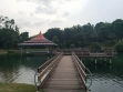 MacRitchie Reservoir-17