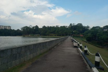 MacRitchie Reservoir-19