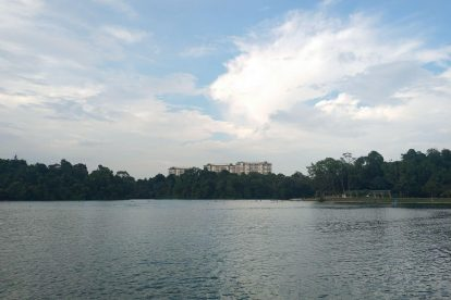 MacRitchie Reservoir-20