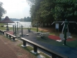 MacRitchie Reservoir-25