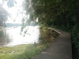 MacRitchie Reservoir-27