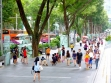 Orchard Road 01